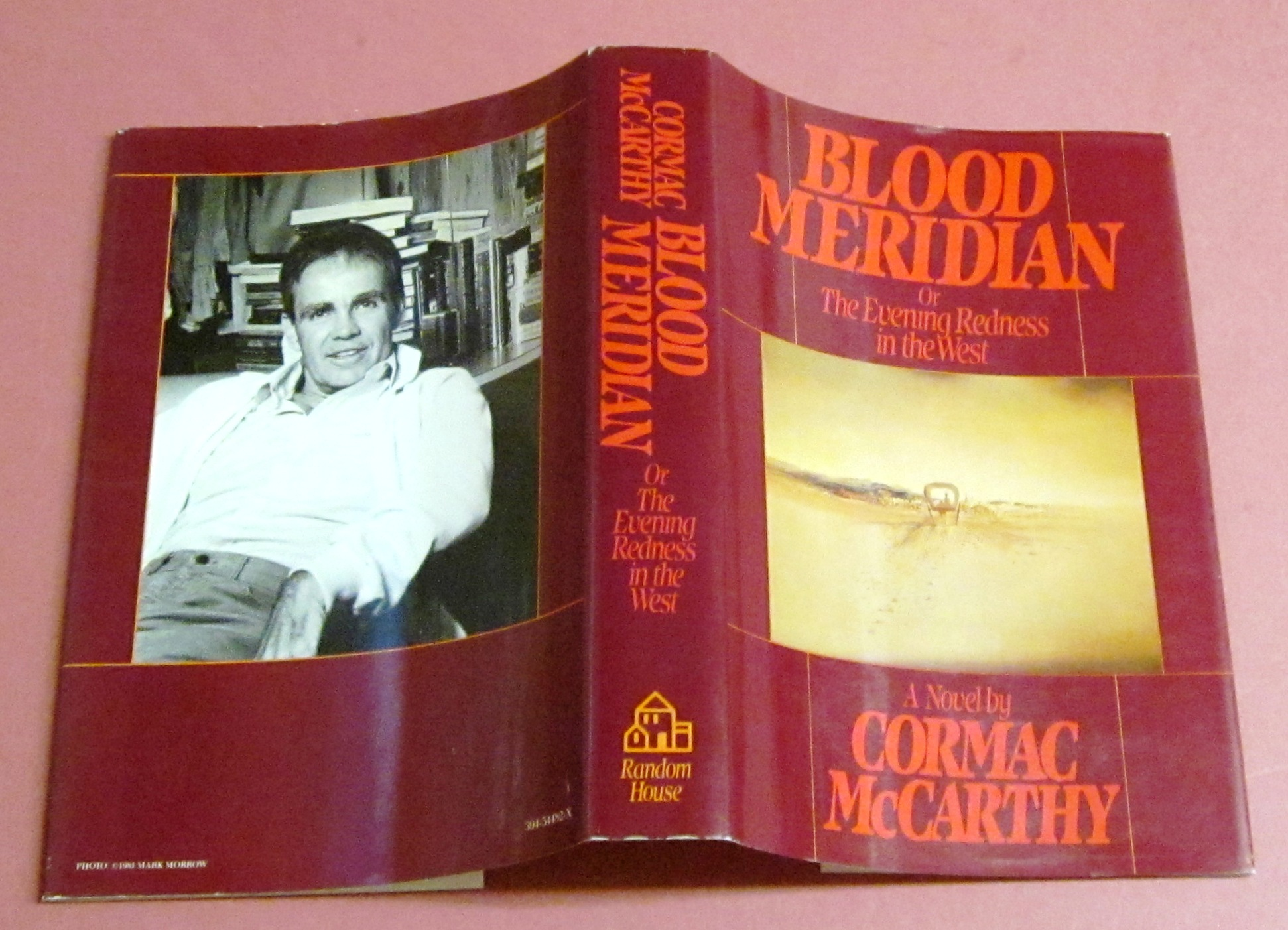 critical essays on blood meridian